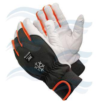 Gloves Dijon Helly Hansen Image